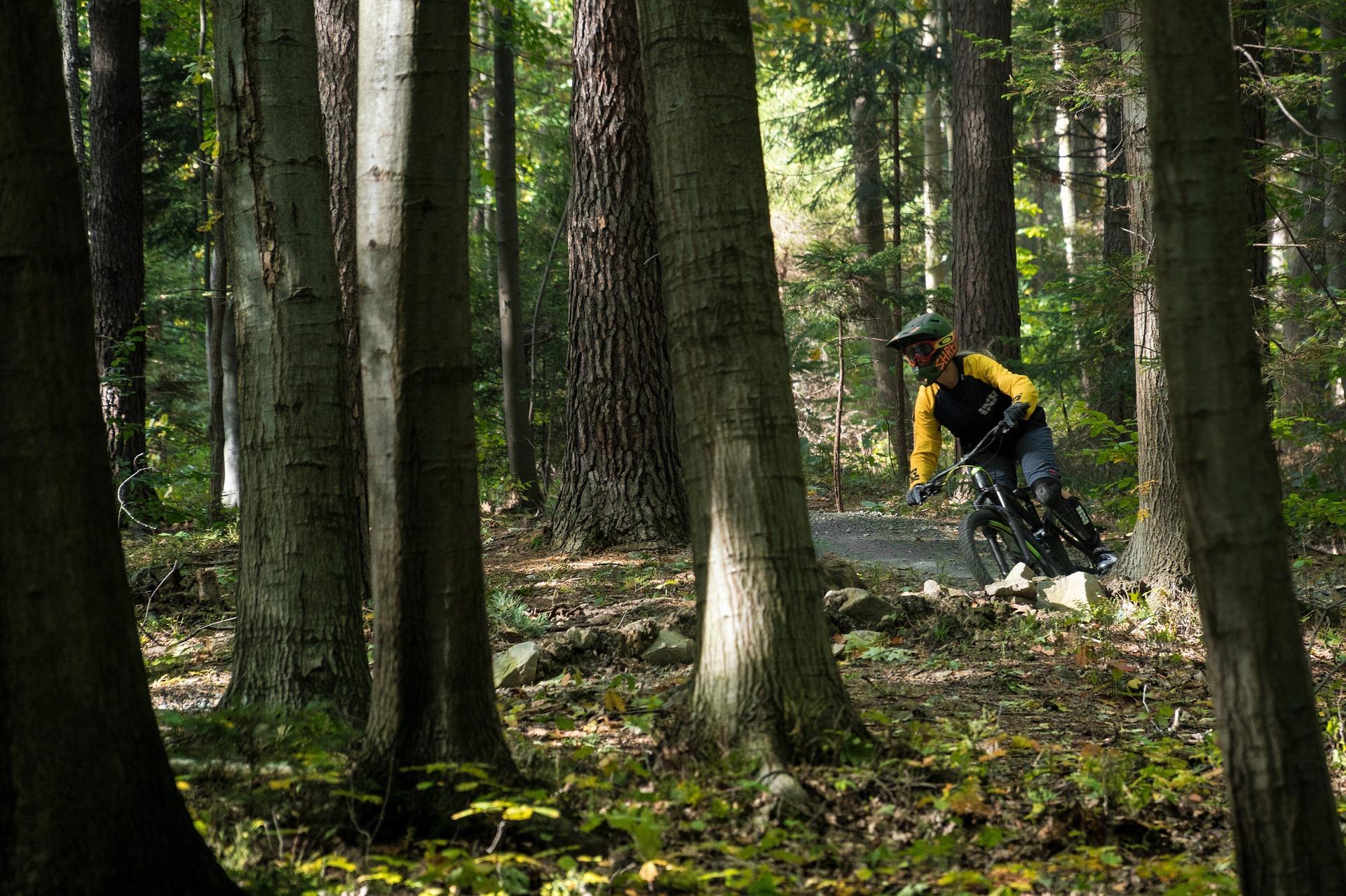 Mountainbike - Hjarbæk Fjord Camping
