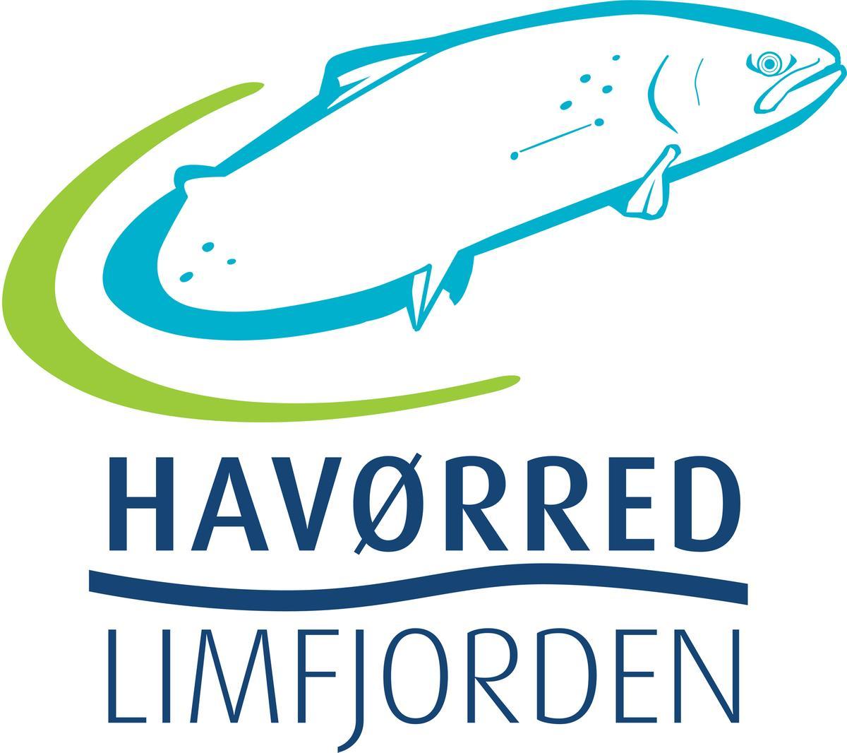 Havørred Limfjorden